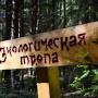 Фото: Виталий Вакульчук