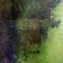 """Акра. Стена. Фото предоставлено участниками экспедиции """"Акра – античный город Боспора"""""""