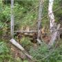 Бывший вход в штольню №2 Красноярского месторождения