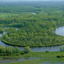 Река Десна ниже Брянска и водоохранные леса леса вдоль неё. Игорь Шпиленок
