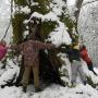Липа в семь обхватов в Сочинском национальном парке. Фото: Игорь Шпиленок