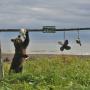 Осторожно, работает медведь! Фото: Александра Волкова
