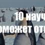 10 НАУЧНЫХ ГОЛОВОЛОМОК, НА КОТОРЫЕ ПОМОЖЕТ ОТВЕТИТЬ АНТАРКТИДА