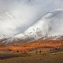 Первый снег. Фото: Юлия Назаренко
