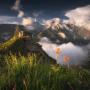 Сон-трава. Фото: Татьяна Лещинская