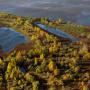 Васюганские болота. Фото: Дарья Афонасова