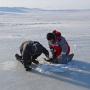 Ученые берут пробы воды и льда. Фото: Гавриил Григоров