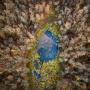 """Лесное озеро. Фото: Константин Толоконников, участник конкурса РГО """"Самая красивая страна"""""""