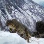 """Фото предоставлено национальным парком """"Сайлюгемский"""""""